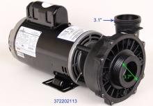 Waterway Executive 56-Frame 4 HP Dual-Speed Spa Pump